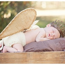 newborn session in a field