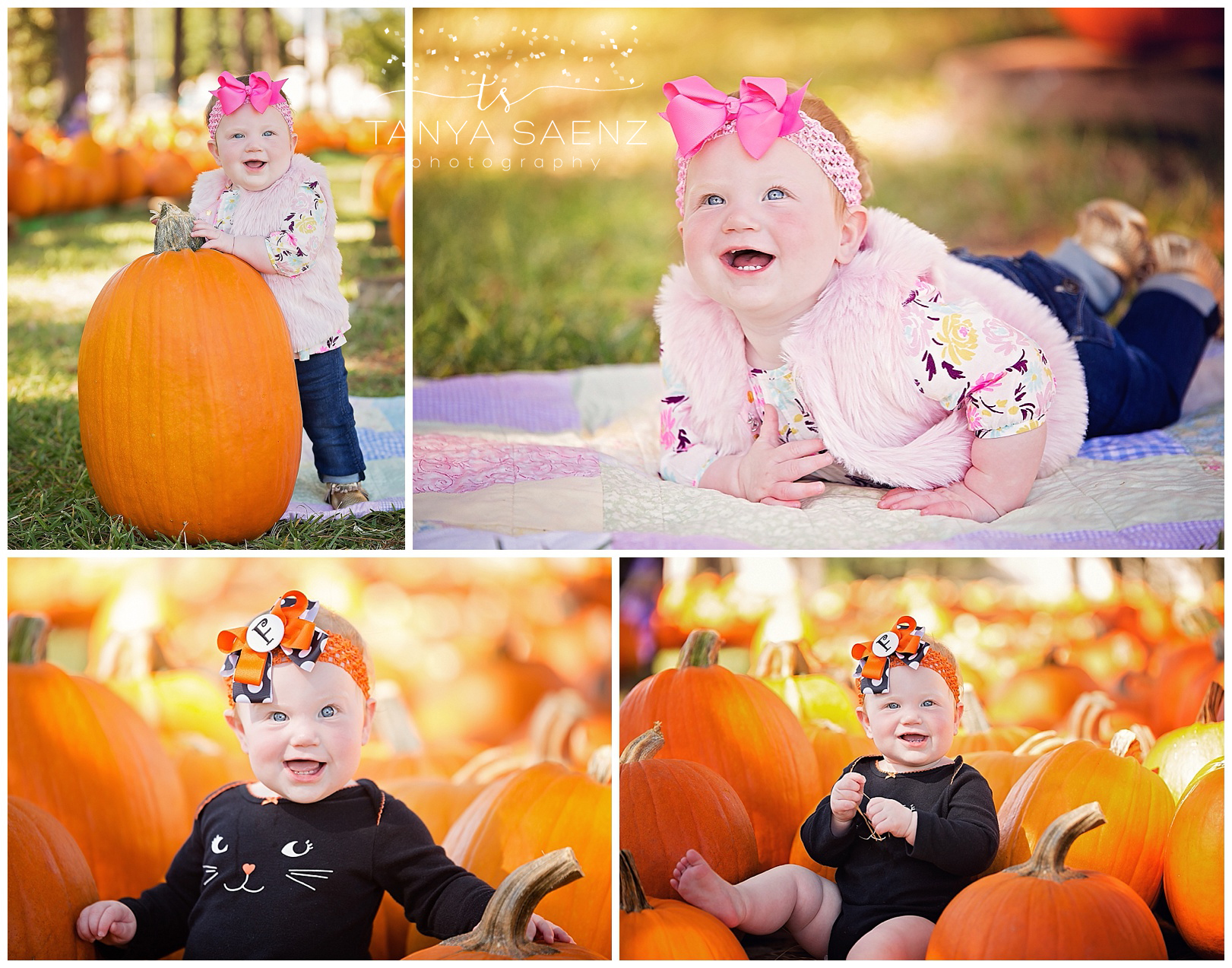 9 month old session at a pumpkin patch